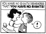 YOU HAVE NO RIGHTS